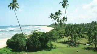 Шри Ланка. Пляжи, серфинг, погоня закитами ичерепахами