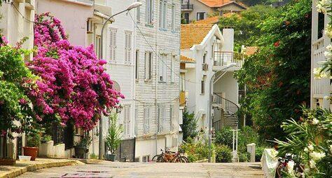 ИзСтамбула— наживописные Принцевы острова!