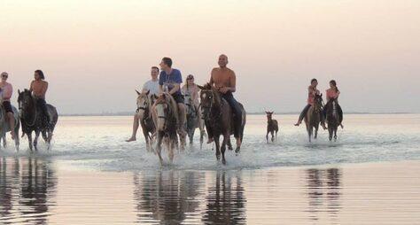 Конные прогулки попустыне икКрасному морю