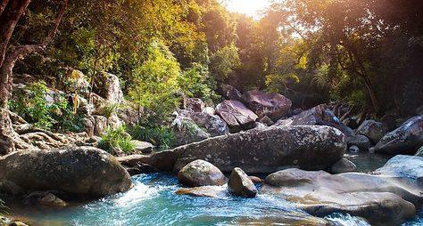 Дикий мир Нячанга: отострова Обезьян доводопадов Бахо