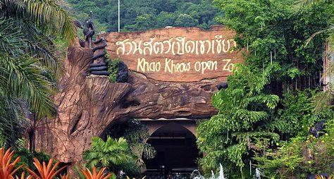 День открытий вПаттайе: сафари-парк, плантации ихрамы
